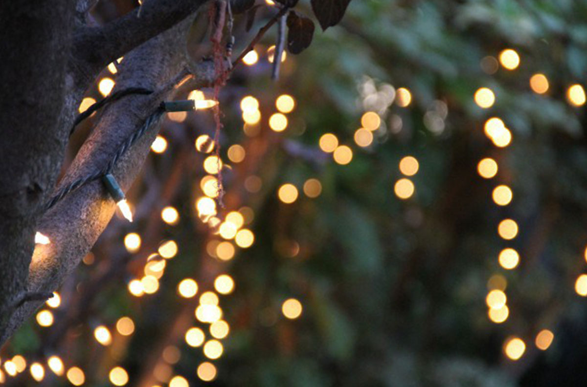 Proper Way To String Lights On A Christmas Tree : How to Make Camping More Glamorous